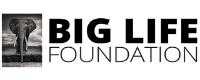 Big Life Foundation Resized